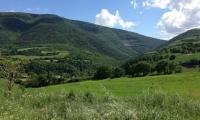Agriturismo Nizzi - Assisi